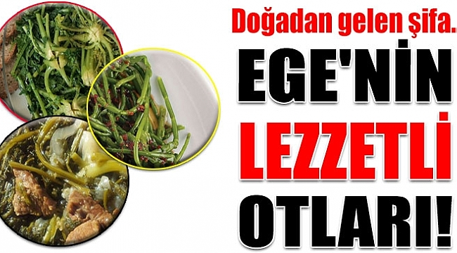 EGE'NİN BU LEZZETLERİNİ MUTLAKA TADIN!