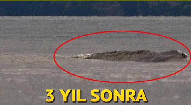 Kanada'nın Van Gölü Canavarı tekrar ortaya çıktı