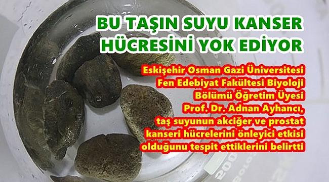 KANSER TEDAVİSİNDE  KULLANILIYOR