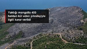 MENDERES'TE 400 HEKTARLIK ORMANIN YANMASINA NEDEN OLMUŞTU